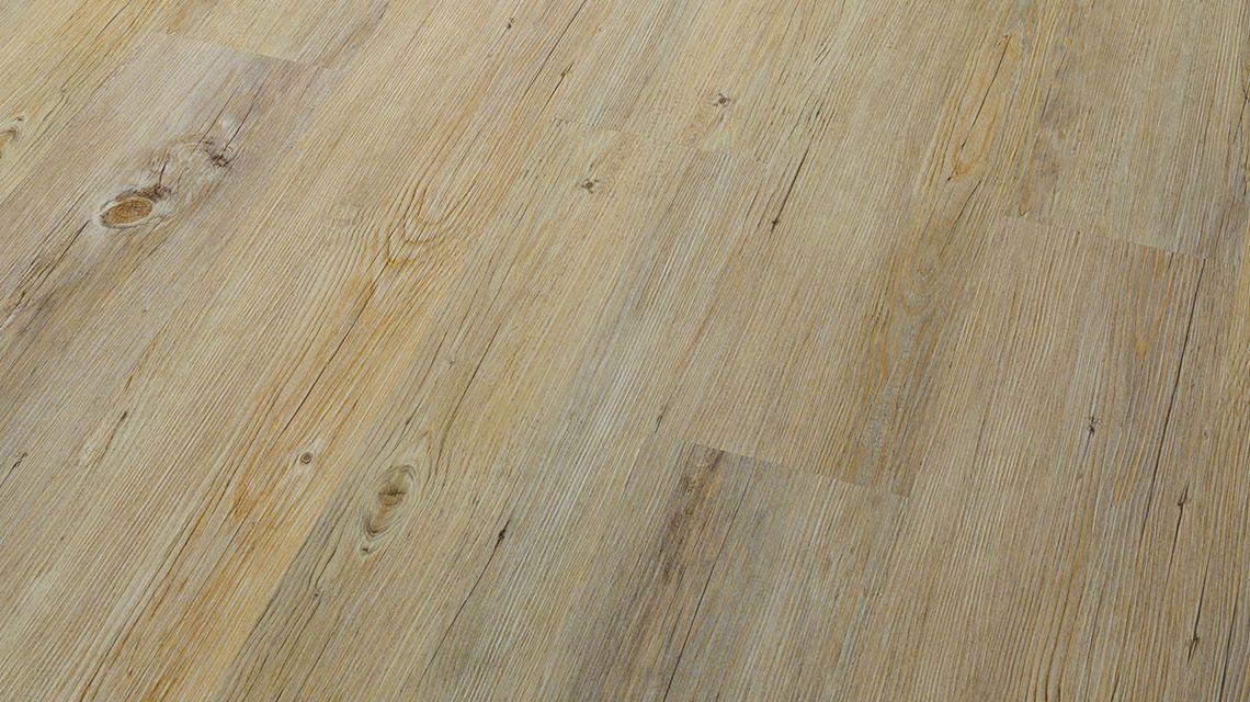 alaska-oak-image-1
